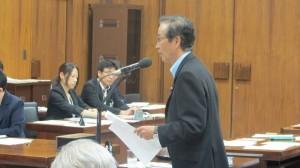 20150807.内閣委-2 (2)