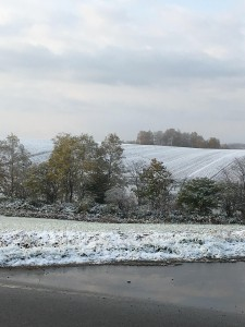 1014.雪景色