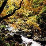天人峡の秋